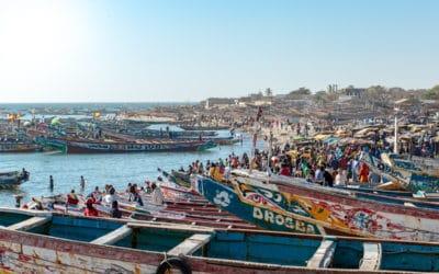 Le retour des pêcheurs à M'Bour