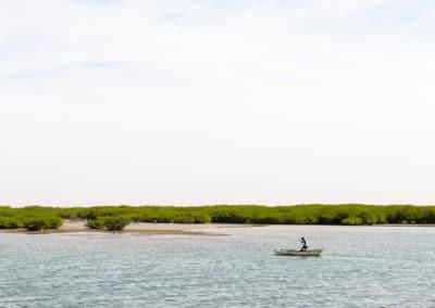 Sénégal-ile-coquillages-palmarin-jumeaux-Africaprotravel-Pierre-Forlin-18