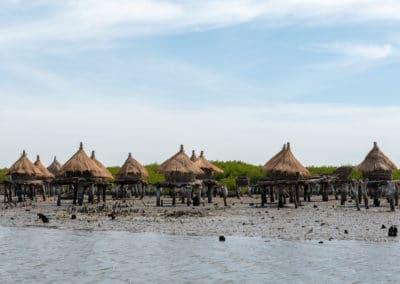 Sénégal-ile-coquillages-palmarin-jumeaux-Africaprotravel-Pierre-Forlin-30